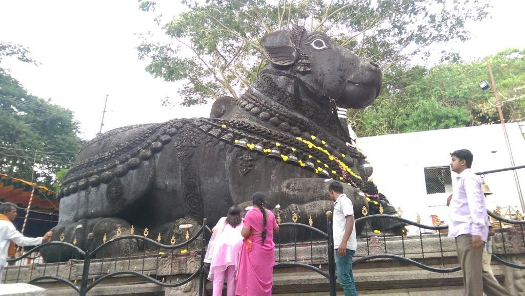 Nandi the Sacred Bull Mysore Chamundi Hill Mysuru